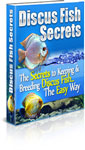 Discus Fish Secrets